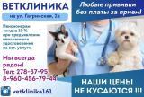 Клиника СПЕЦИАЛИСТ, фото №1