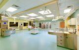 Клиника Ветклиника, фото №3